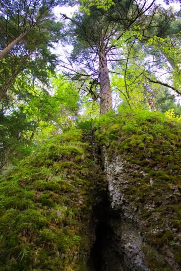 gorge trail waterfalls 023