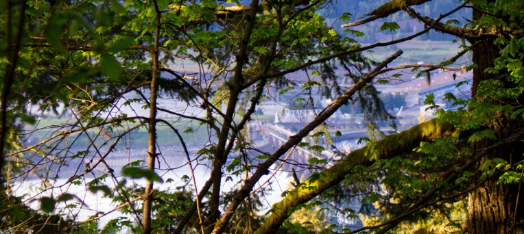 gorge trail waterfalls 091