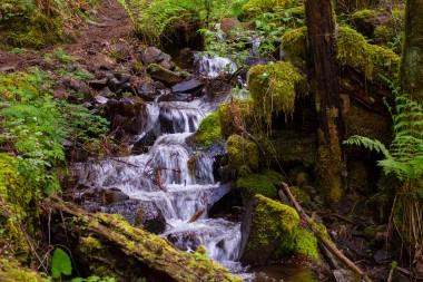gorge trail waterfalls 133