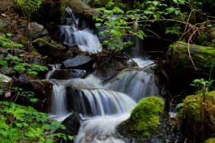 gorge trail waterfalls 145