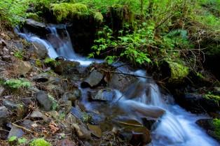 gorge trail waterfalls 151