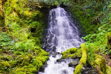 gorge trail waterfalls 229