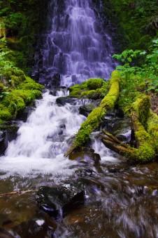 gorge trail waterfalls 249