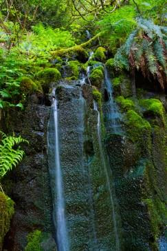 gorge trail waterfalls 295