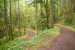 gorge trail waterfalls 3422