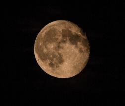 moon 020